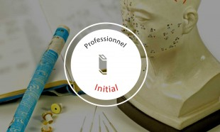 Formation-Acupuncture-Cours-Initial